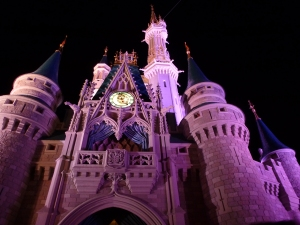 WaltDisneyWorld_5_2014 167
